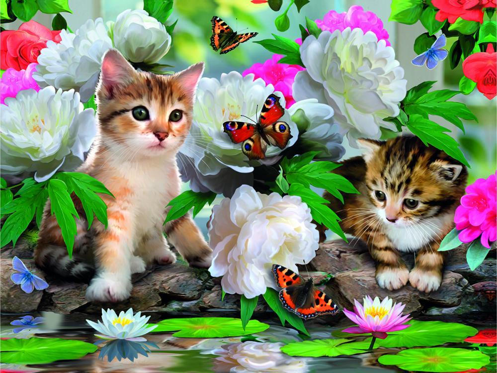 красивые открытки с цветами и животными сами видели это