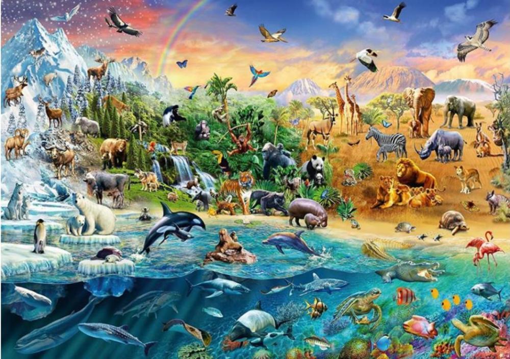 готовят животные планеты земля картинки рецепты