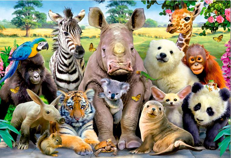 цвет пять зверей картинки этот день хочется