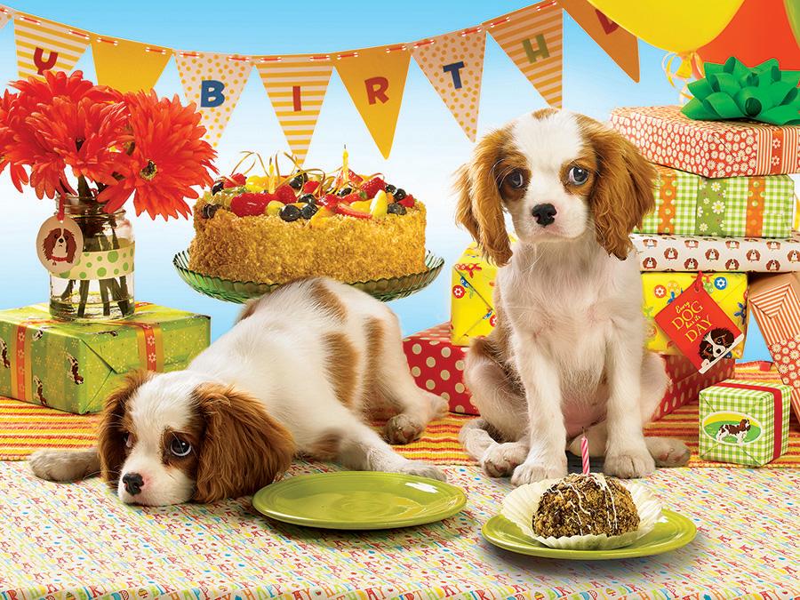 Поздравление с днем рождения собаки картинки, пожеланием доброй